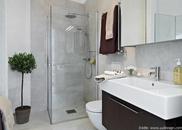 ma a azienka z prysznicem zasady jej aran acji apartment bathroom decorating ideas
