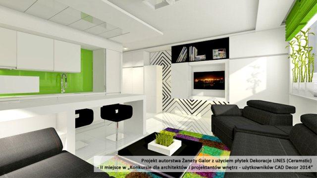 Konkurs-dla-architektów-CAD-2.jpg